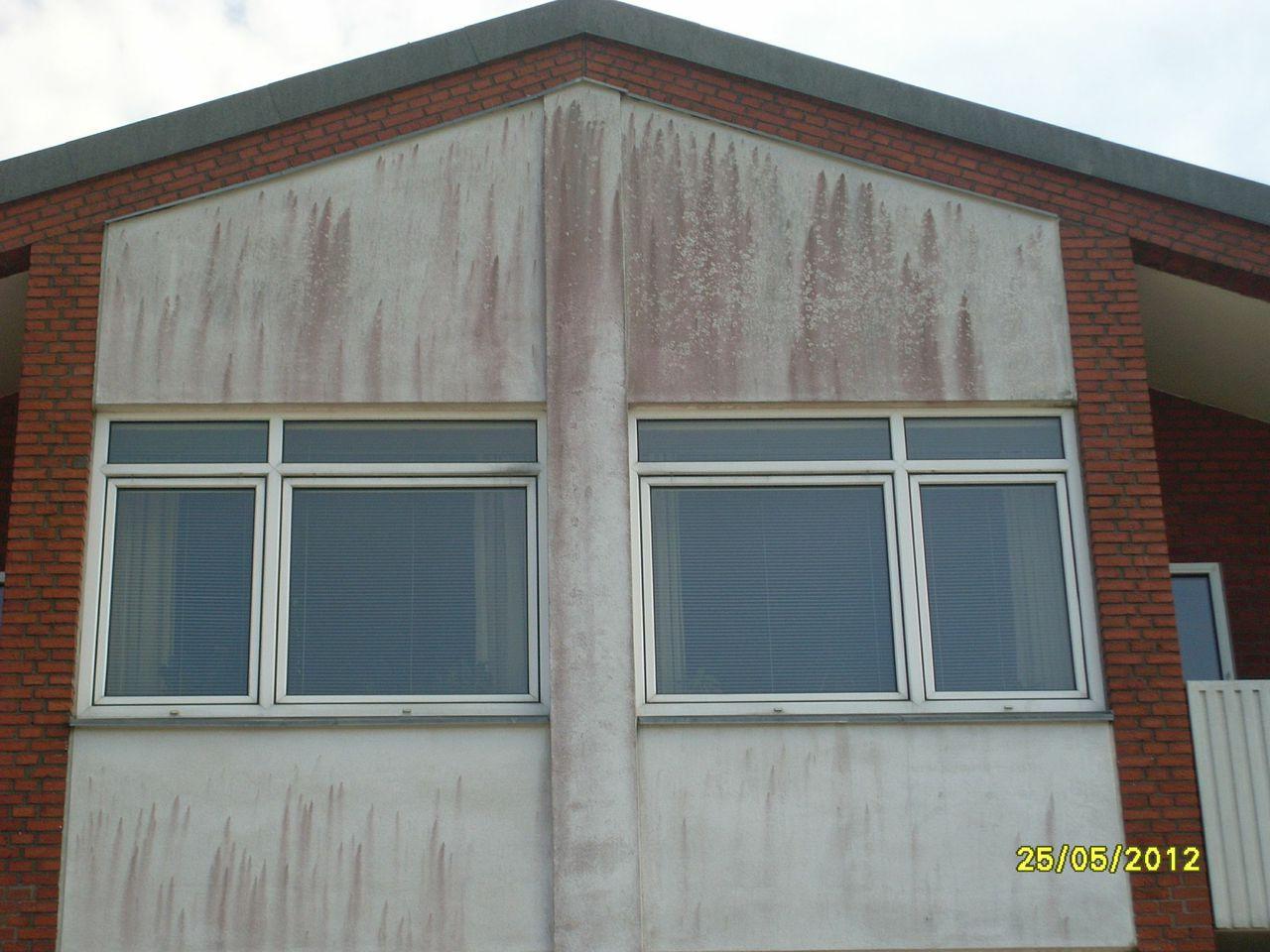 Algebekæmpelse af facader